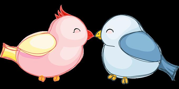 Två fåglar som kysser varandra och visar kärlek